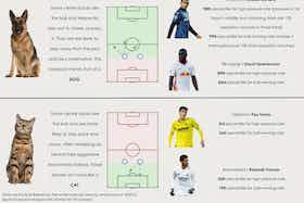 Article image: https://image-service.onefootball.com/resize?fit=max&h=818&image=https%3A%2F%2Fbarcauniversal.com%2Fwp-content%2Fuploads%2F2021%2F07%2FDogCatReadyToPost-2048x1550.jpg&q=25&w=1080