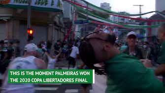 Preview image for Palmeiras fans celebrate Copa Libertadores triumph