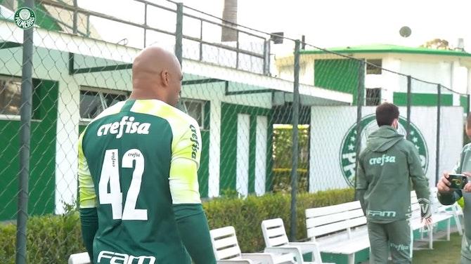 Preview image for Palmeiras' last session before face Universidad Católica