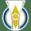Logo: Brasileirão Feminino